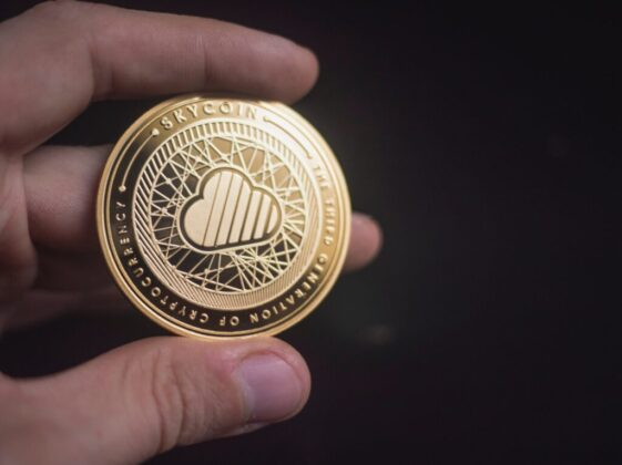 person holding gold-colored coin